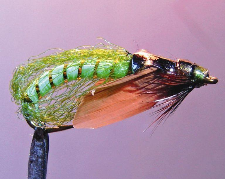 Сocoon green pupa